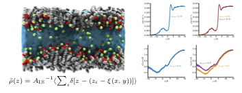 """New paper: """"Structure and dynamics of nanoconfined water between surfactant monolayers"""""""