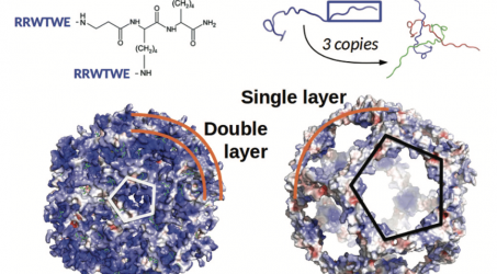 """New Paper: """"Nanocapsule designs for antimicrobial resistance"""""""